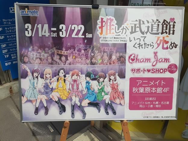推し武道 サポート SHOP in アニメイト秋葉原