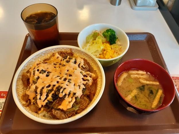 高菜明太マヨ牛丼 大盛り サラダセット