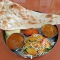 インド食堂 マハトマ  野菜&タンドリーカレー