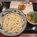 Photos: 丸亀製麺 かけうどん 鶏天
