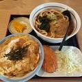 Photos: 山田うどん たぬきうどん ミニ玉子丼 クーポンカレーコロッケ