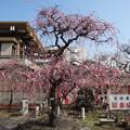 2018.2.26 難波 熊野神社
