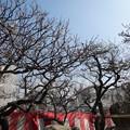 写真: 2018.2.26 難波 熊野神社