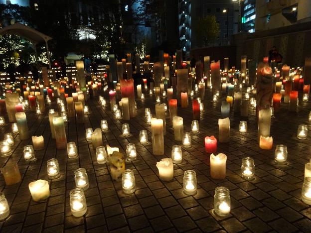 Photos: 2019.12.4 キャンドルナイト 2019 Winter 西梅田ナイト