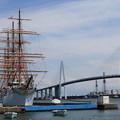写真: 海王丸と新湊大橋