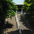 写真: 慈照寺への階段