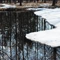 写真: 春と冬の境界線