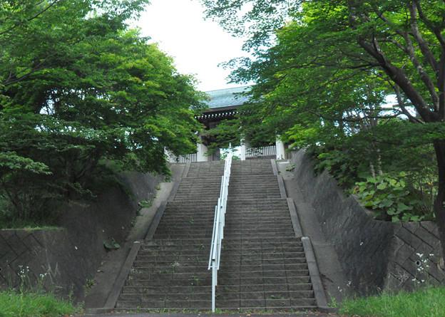 夏の慈照寺への階段
