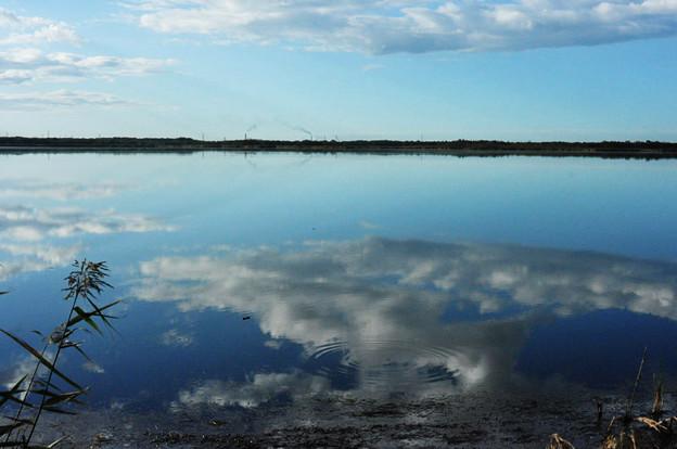 ウトナイ湖の鏡風景