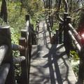 写真: 緑ヶ丘公園への階段