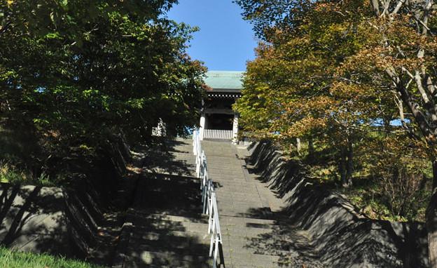 慈照寺への階段