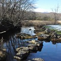 錦大沼へ注ぐ川の風景