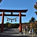 正面から見た樽前神社の鳥居