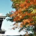 慈照寺の山門と紅葉の始まり
