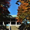 慈照寺の上り階段と紅葉の始まり