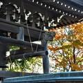 慈照寺の鐘と紅葉の始まり