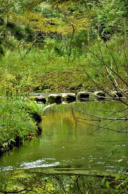 岩の橋がある風景