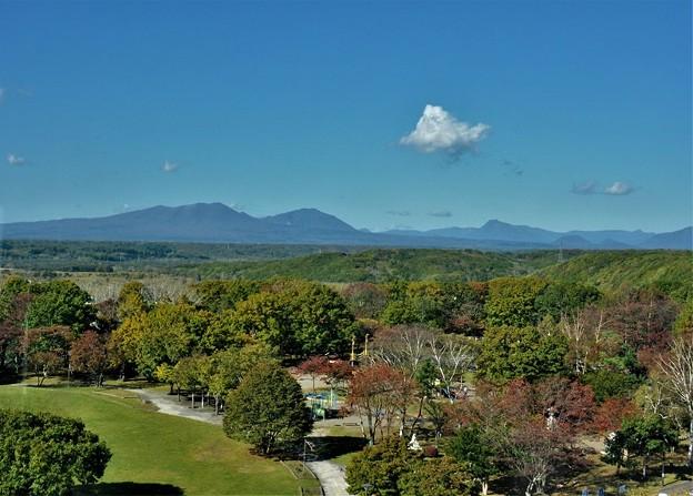秋~展望台から見た樽前山