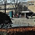 昼下がりの図書館前