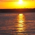 Photos: 朝日が映る海