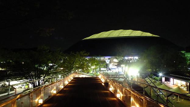 西武ドーム夜景4