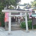 Photos: 川越八幡宮