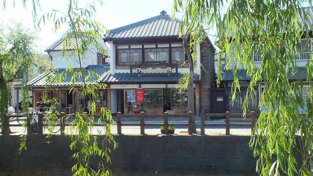 佐原の古い町並みと柳の木