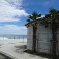 写真: 神奈川県 西湘の海  2