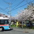 写真: 鎌倉山 丸ポスト
