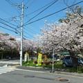 写真: 鎌倉山 丸ポスト3