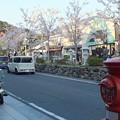 写真: 鶴岡八幡宮前丸ポスト