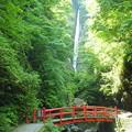 写真: 洒水の滝4