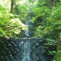 写真: 洒水の滝7