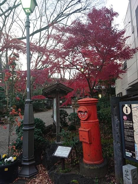 静岡県三島市三島楽寿園正門前 丸ポスト