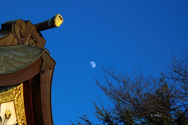 写真: ~真昼の月~