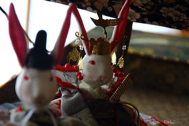~ウサギのお雛様~