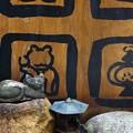 写真: ~猫とカエルとランプと石と~