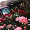 写真: ~薔薇電車~