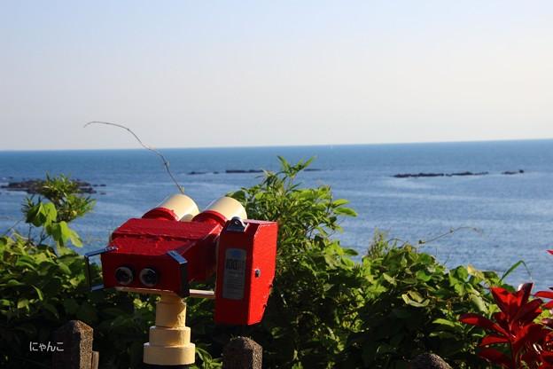 Photos: ~海を見てた~