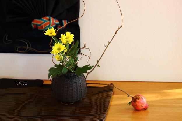 Photos: ~芸術の秋~