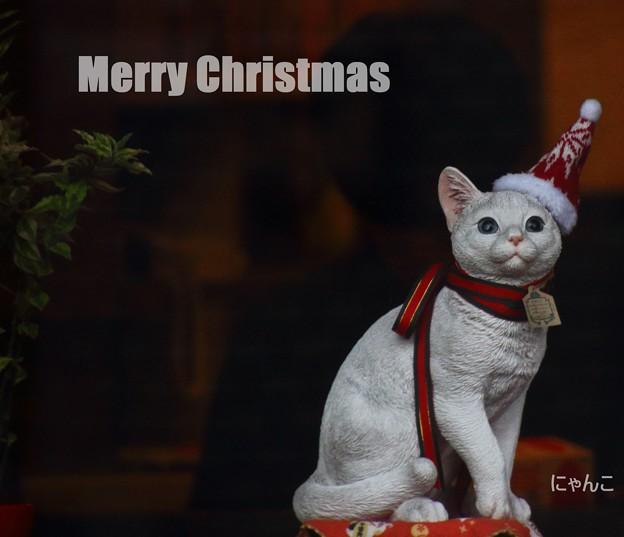 ~Merry Merry Christmas~