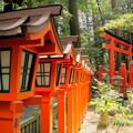 椿岸神社の境内