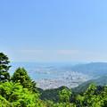 琵琶湖かすみん