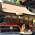 写真: 日吉大社 東本宮