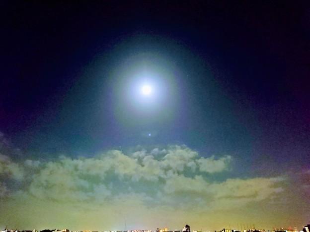 写真: 月暈