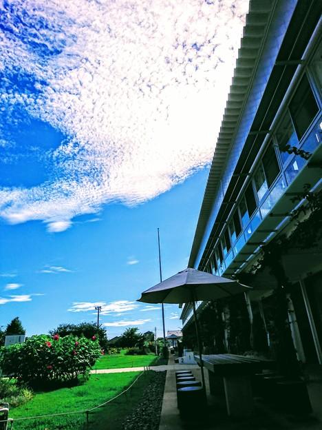 安房国 保田小学校(道の駅)