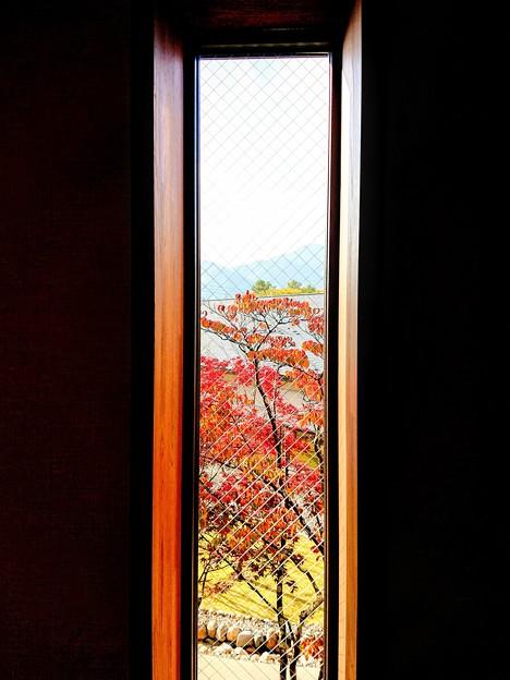 信州 大町 ホテルの窓