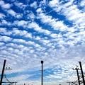 Photos: 冬の空
