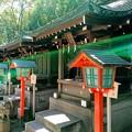 Photos: 千葉神社(妙見本宮) 末社 光射す