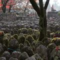 写真: 化野念仏寺 西院の河原